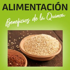 ALIMENTACION SALUDABLE: BENEFICIOS DE LA QUINOA